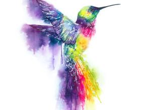 Why the Hummingbird?