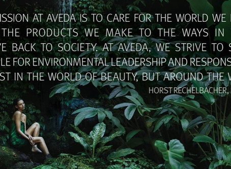Why Aveda?