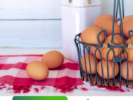 Ovo e seus benefícios para a sua saúde!