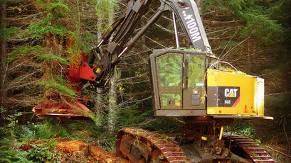 Tree Removal in all Terrains