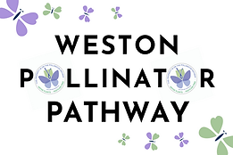 Weston PP Logo - Option 1.png