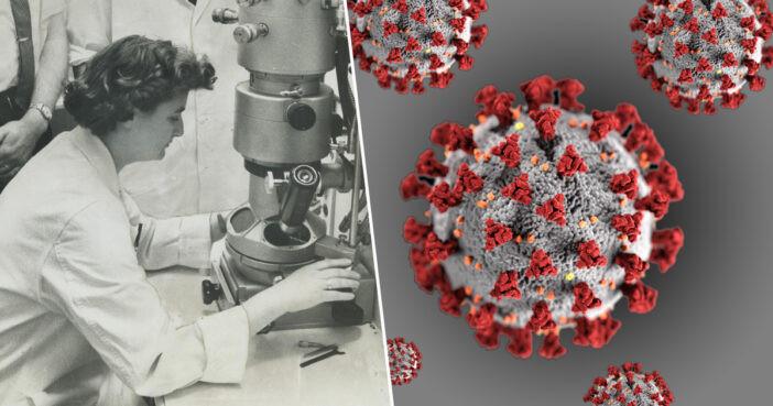june almeida virologista coronavirus