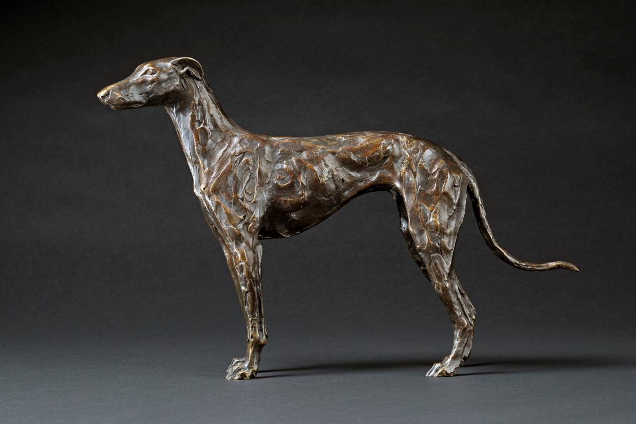 standing greyhound 2013 2