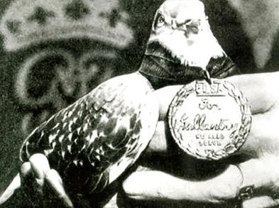 GI JOE with Medal.jpg