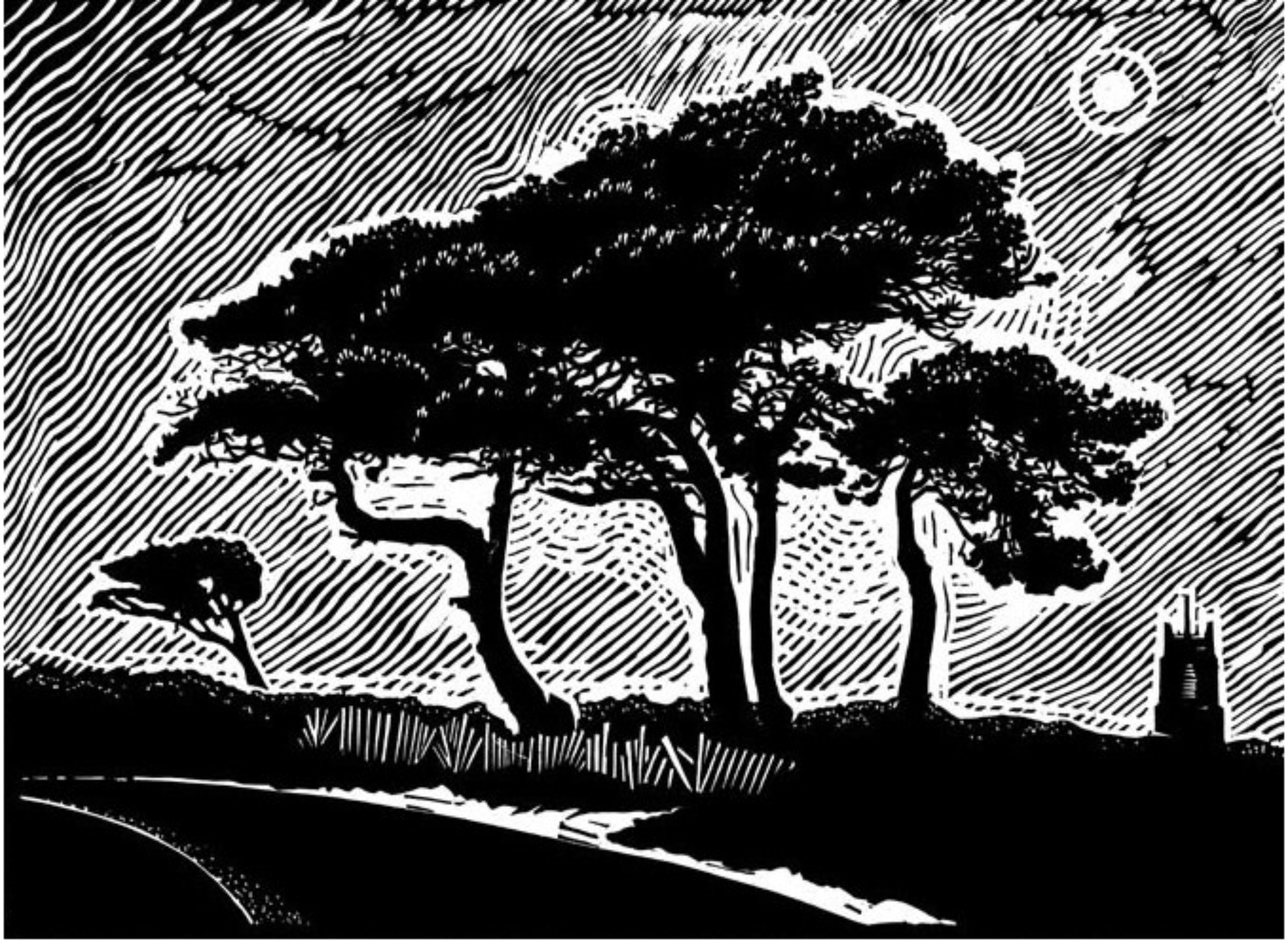 James Dodds, Night Trees