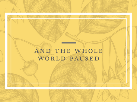 And the Whole World Paused