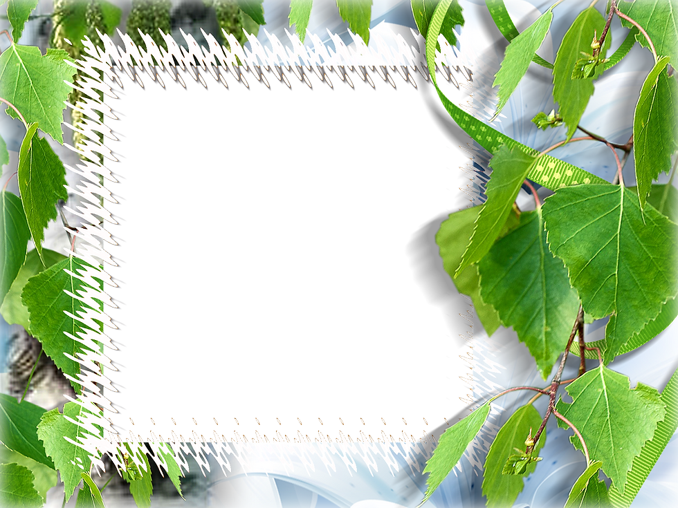 1614694827_207-p-zelenii-fon-s-ramkoi-24