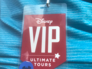 Is a Group VIP Tour at Walt Disney World Worth the Price?