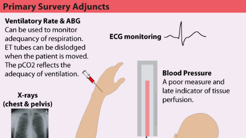 Adjuncts to the Primary Assessment in Trauma
