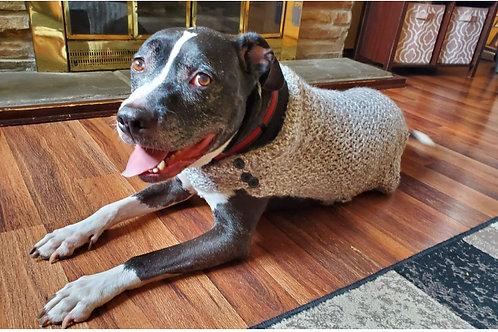 Dog Coat (M)