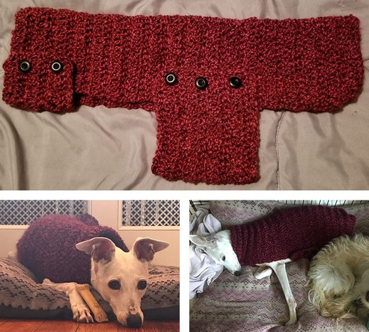 Custom Dog Coat