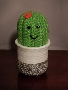 Cactus Pin Cushion (4)