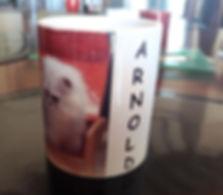 arnold mug.JPG