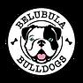 BB logo tongue.png