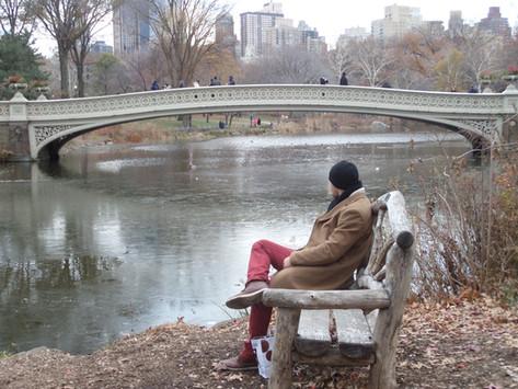 New York City & Washington DC '14
