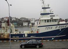 MS Toya, LK 8222.jpg