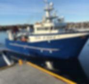 Fiskefartøy for salg