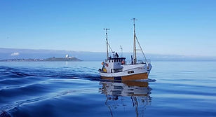 verdivurdering av fiskebåter.jpg