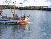 SALTVÆRING_edited_edited.jpg