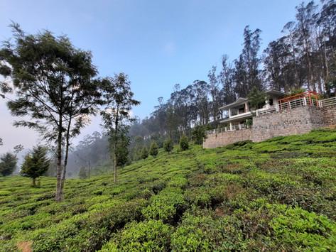 A Rainy Visit to Kotagiri Hills ...