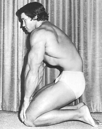 Schwarzenegger, A. (1992) Bodybuilding Encyclopedia.