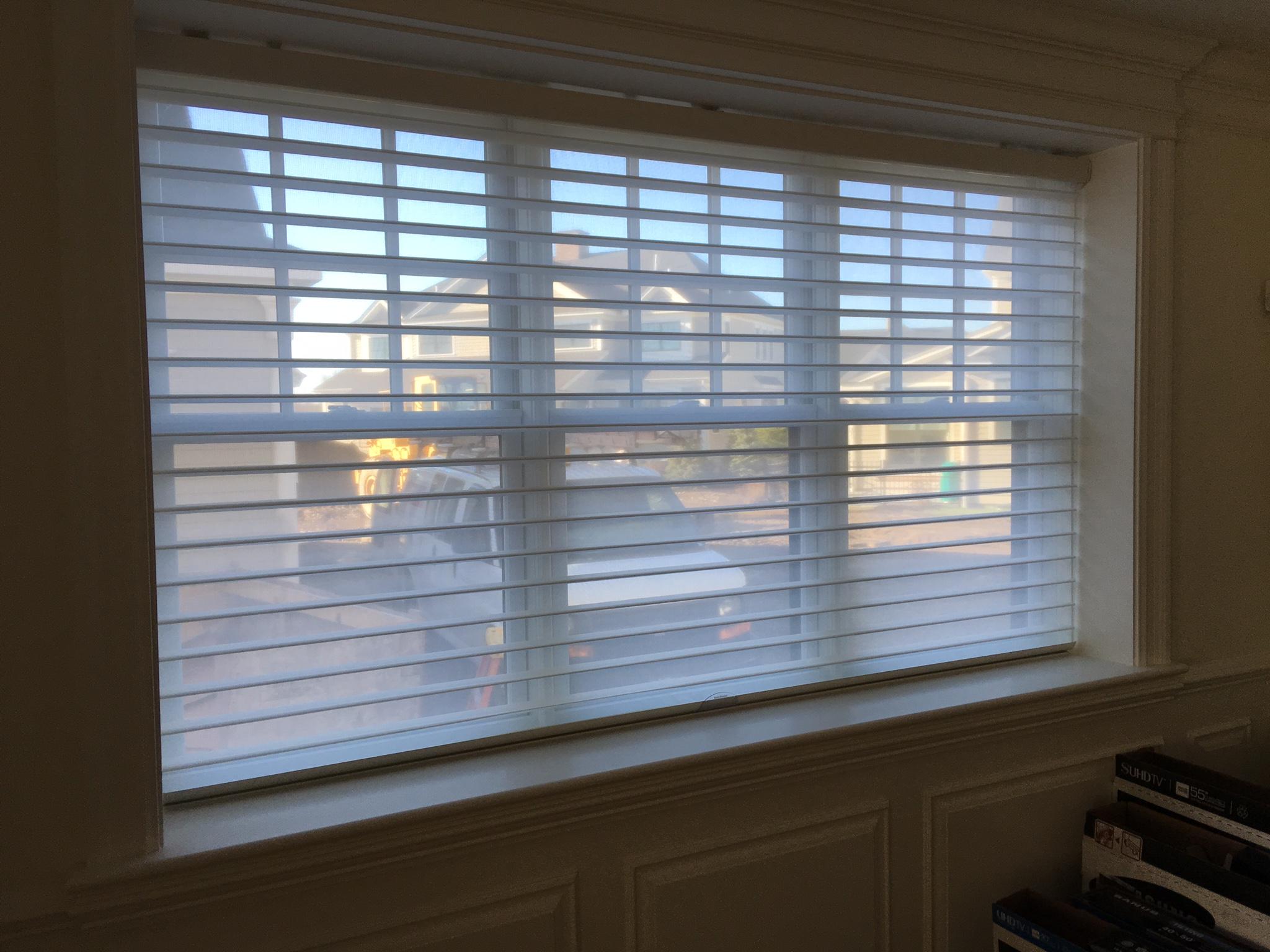 Silhouette on Triple Window