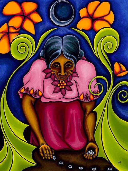 "Cuyun, Zamara  |  ""La Siembra  - The Sowing"""