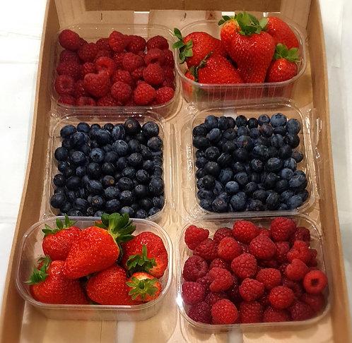 Berry Fruit Box