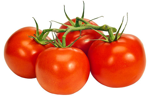 Tomatoes on the Vine - KG