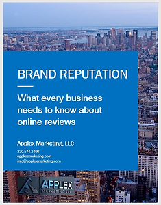 Brand Reputation Report