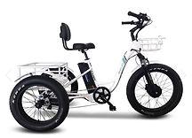 Emojo Caddy Pro Trike.jpg