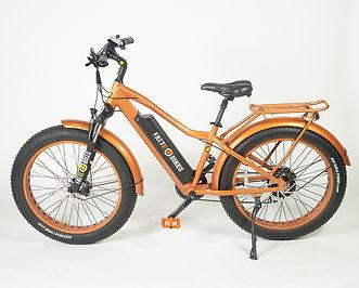 FattE-Bikes (30 of 55).jpg