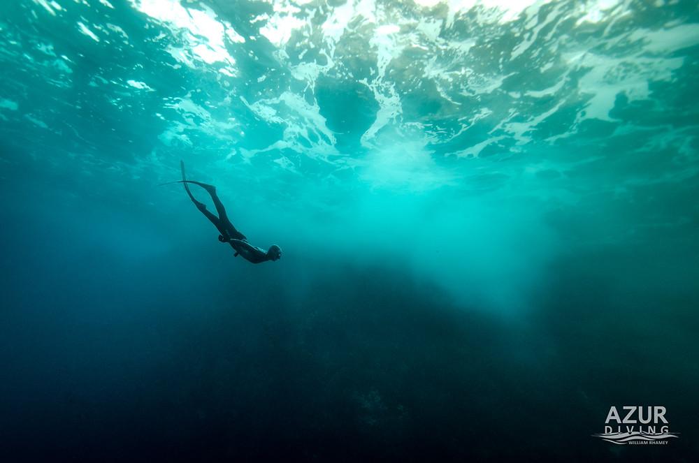 Alice Modolo diving beneath the waves