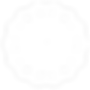 Logo Pilar_Cosmoterapia_transaparente 2.