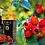 Thumbnail: Aceite de rosa mosqueta BIO
