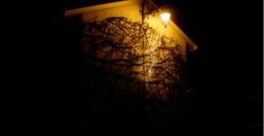 Photographie : lumière et nuit