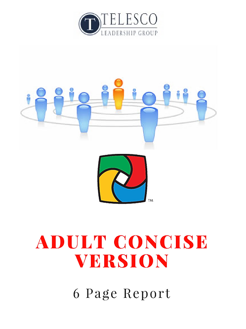 Adult DISC Personality Profile, Concise / Mini Version (6-pages), English