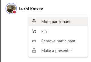 Presenters can mute