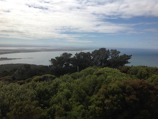 From Bluff to Cape Reinga and everything in between, delivering everyday low prices