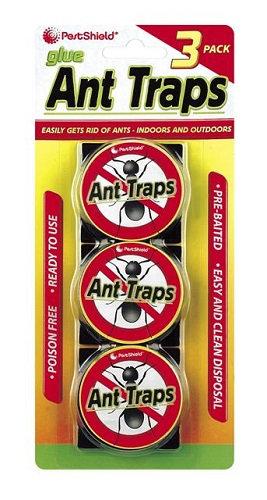 Ant Traps