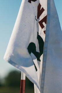 #2 Flag