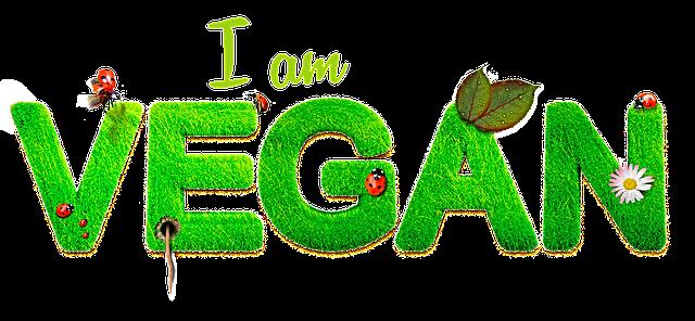 1 olhar vegan