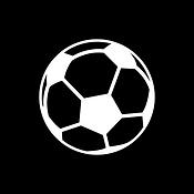 mark_soccer.PNG