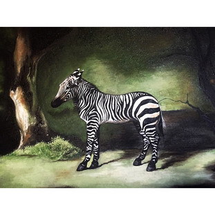 Zebra (After George Stubbs, 1763)