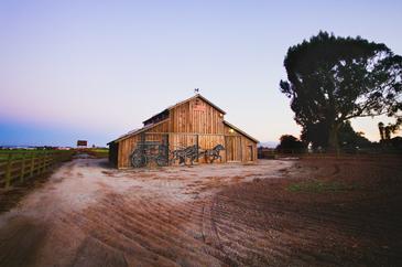 Coyote Barn