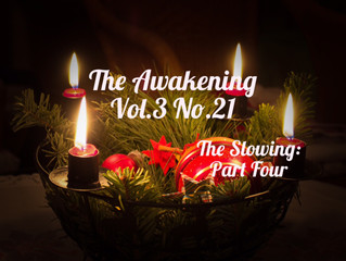 The Awakening: The Slowing (Part Four)