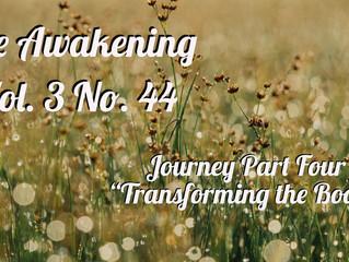 Awakening: The Journey Part Four