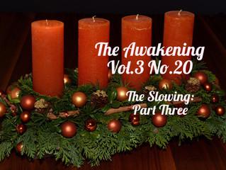 Awakening: The Slowing (Part Three)