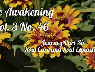 Awakening: The Journey Part Six
