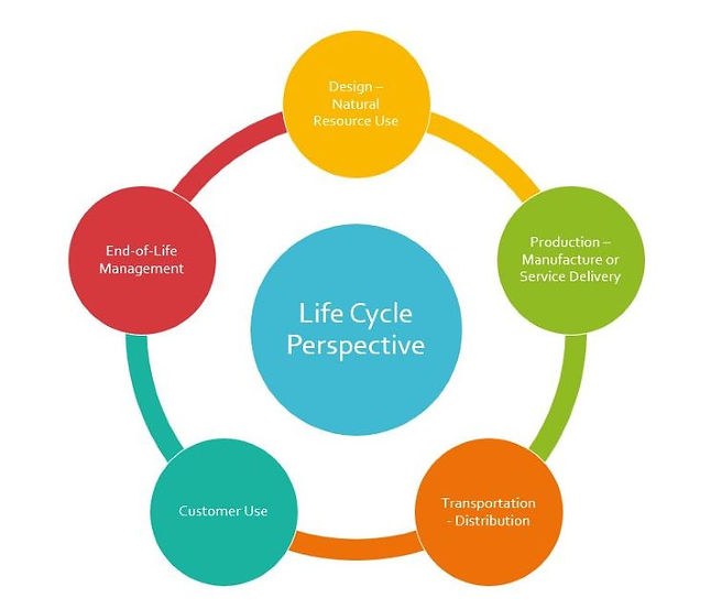 Life Cycle Perspectiveresized.JPG